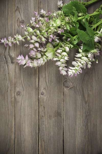 Sage bouquet lying on wooden background.